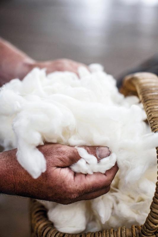 Ermenegildo Zegna wool